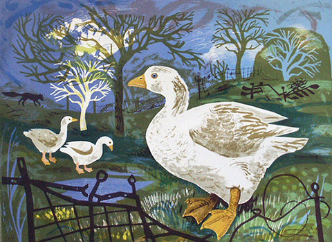 Spring Life – Mark Hearld & Paul Young