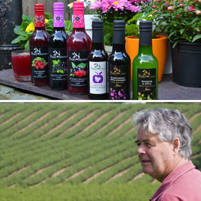 Above: A few of Pixley Berries Cordials and Juice. Below: Edward Thompson, surveying his fields of blackcurrants at Pixley