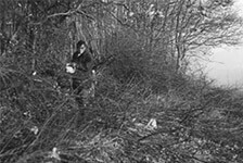 Clearing Orchard Boundary 1976