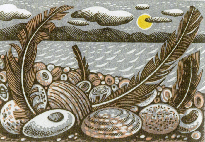 Tideline Feathers by Angie Lewin