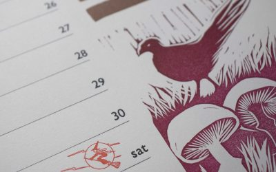 Tinsmiths Calendar 2020: The Forager's Year