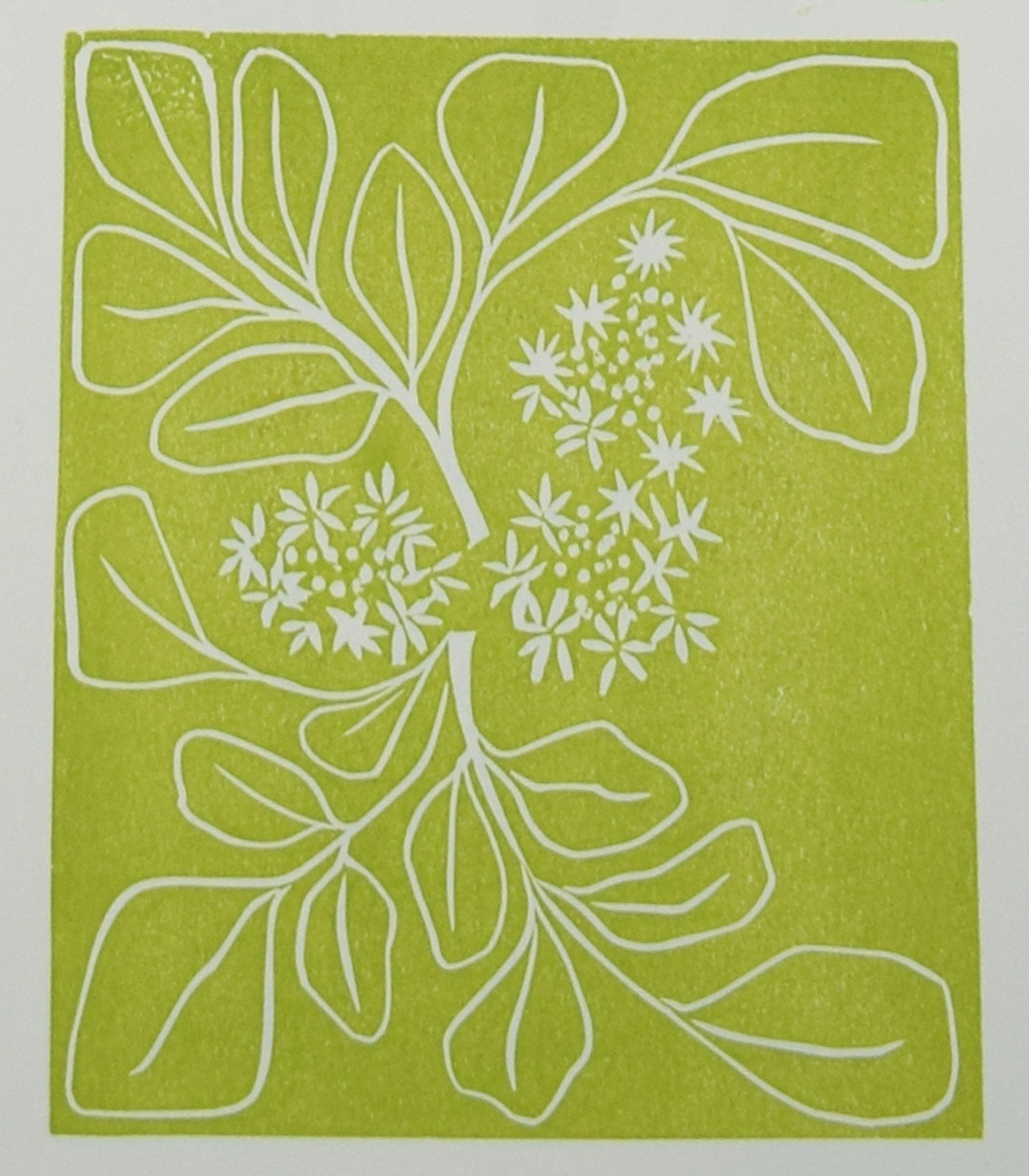 Watercress Linocut